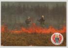 Hungary Szombathely Firemen Firefighter Underbrush Brush Fire Post Card Postkarte Karte Carte Postale POSTCARD - Feuerwehr