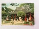 Full Of Life In The Chung-Shan Park (TAIPEI, TAIWAN)  - Cartolina FG NV - Taiwan