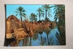 VINTAGE POSTCARD - Iraq - BAGHDAD -  Deqar - Iraq