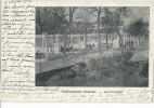 CPA 78 MANTES ETABLISSEMENTS VOITELIER ELEVAGE POULES LES PARQUETS 1903 Voir état - Mantes La Jolie