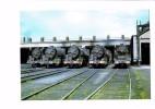 CpSM -Train Locomotive Loco 141 R 877,747,1315,1197 + 241 P 16, Dépôt De NANTES BLOTTEREAU 44 ;08/1969 - Nantes