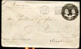 81462 - 10 C Brun OMEC WASHINGTON Sept 1893 Pour L'AUTRICHE TB - Enteros Postales
