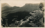 AUSTRALIE - Jamieson Valley From Narrow Neck KATOOMBA - Australie