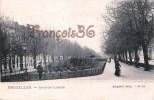 Bruxelles - Avenue Louise - 2 SCANS - Avenues, Boulevards