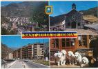 Sant Julia De Loria Valls Andorra Chien Pyrenées - Andorre