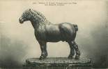 Animaux - Chevaux - Arts - Sculpture - Géo Malissard Sculpteur Né à Anzin -Indigène Du Fosteau Champion Gros Trait Belge - Chevaux
