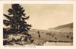 15751. Postal LES ROUSSES D'AMONT (Jura). Vue Du Lac - Otros Municipios