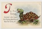 "T1000 - Tortue - Turtle "" En Relief"" - Turtles"