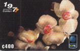 COSTA RICA - Flowers of Costa Rica, ICE Tel prepaid card C 400, 04/99, used