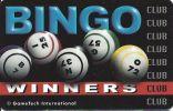 GameTech Electronic Bingo Winners Club Card - Casino Cards