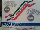 CARABINIERI NELLA RESISTENZA MOVM CADELBOSCO SOPRA REGGIO EMILIA MOSTRA  N1995  FB5949 - Patriottiche