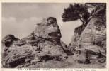CPA   --  DPT 44  --  LA  BERNERIE  --  ROCHER  DU  LION  ET  FALAISE  A  ROCHE  GRISE.......... - La Bernerie-en-Retz