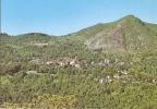 172/FG/15 - CUNEO - VIOLA - Panorama - Cuneo