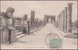 Algérie 1906 Y&T 111, 5 C Blanc Sur Carte Postale De Timgad Ou Thamugadi à Paris. Voie De Decumanus Et Arc De Trajan - 1900-29 Blanc
