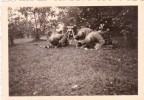 PHOTO ORIGINALE 39 / 45 WW2 WEHRMACHT POLOGNE BREST LITOVSK SOLDATS ALLEMANDS TIR DE MORTIER GRANATWERFER 34 - Guerre, Militaire