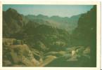 Egitto, Egypt, Monte Sinai, Mountains View From Sinai, Pecore Al Pascolo - Autres