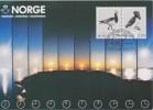 Norway Exhibition Card Nordphil - Hvidovre - With Mi 883-884 Birds - Barnacle Goose - Branta Leucopsis - Little Auk - Noorwegen