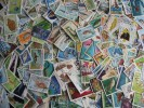 Topical Hoard Breakup 250 Marine Life. Duplicates & Mixed Condition. Check Them Out! - Vrac (max 999 Timbres)