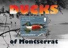 MONTSERRAT  MINT N.H SCOTT # ?? ; IGPC 1202 SS  (  BIRDS ; DUCKS - Montserrat