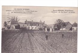 25396 Savennières Château Chamboureau -Vin Blanc Anjou - Emile Girard Proprietaire - Vigne Viticulture Wine - Vignes