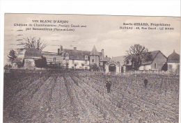 25396 Savennières Château Chamboureau -Vin Blanc Anjou - Emile Girard Proprietaire - Vigne Viticulture Wine