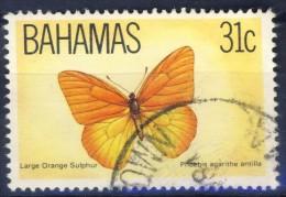 +K2044. Bahamas 1983. Butterfly. Michel 543. Used(o) - Bahamas (1973-...)