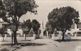 CPSM TISSEMSILT Ex. VIALAR (Algérie) - Commune Mixte - Other Cities