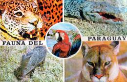 POSTAL PARAGUAY - FAUNA DEL PARAGUAY - Paraguay