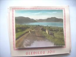 IJsland Iceland Island Gledileg Jol Sheep - IJsland