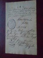 Lüneburg -Uelzen Celle - ALTONA -Hildersheim  Cassel-  Old Handwritten Passport Page ?  Pass Visa  1845 D133574.11 - Manuscritos