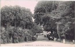 Cpa BORDEAUX JARDIN PUBLIC LES PALMIERS - Bordeaux