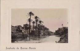Egypte - Bonne Année Paysage Au Fayoum - Cachet Helouan 1907 - Fayyum