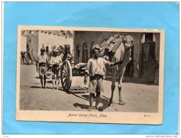 ADEN- Gros Plan D'un Attelage Charette Par Chameau Et Yéménites-native Camel Carts-années 1910+20- - Yémen