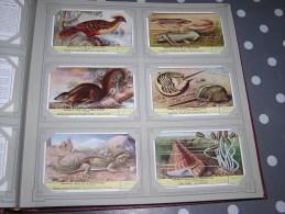 ANIMAUX ISSUS DE LA PREHISTOIRE  Série Complète De 6 Chromos Trading Cards Chromo - Liebig