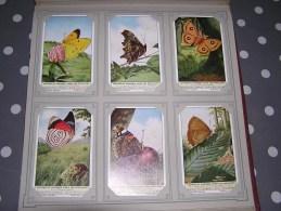 LETTRES ET CHIFFRES CHEZ LES PAPILLONS   Insectes  Série Complète De 6 Chromos Trading Cards Chromo - Liebig