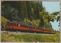 Chemin De Fer Nyon - St. Cergues - Morez - Entre Cheseau Et Les Pralies - Bahn - Railway - Trains