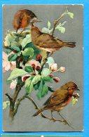 T108, Oiseaux Sur Une Branche De Pommier,  Fantaisie, Relief, Circulée 1908 - Vogels