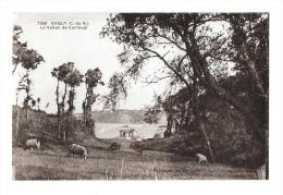 (6781-22) Erquy - Le Vallon De Carroual - Erquy