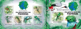 Mozambico 2011, Year of the forest, Tropical birds, 6val in BF +BF