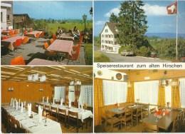 Hirzel - Speiserestaurant Zum Alten Hirschen           Ca. 1970 - ZH Zurich