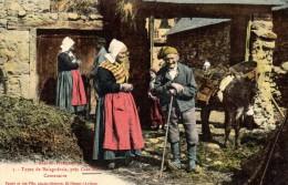 09 - CASTILLON EN COUSERANS Types De Balaguérais Centenaire - Autres Communes