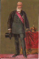 CHROMO MAISON M. VANNIER RUE DES CORDELIERS A POITIERS  DON PEDRO II - Sonstige