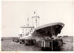 Photo Originale Bateau - Cargo Arabe � Quai, vue de Face - RAMSES II -
