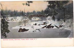 25513 Winter Scene, Central Park, New York, NY -10799, Bosselman Germany - - NY - New York