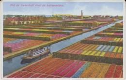 Met De Trekschuit Door De Bollenvelden - Holanda