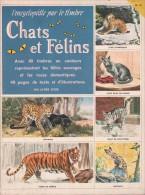 L´encyclopédie Par Le Timbre - Chats Et Félins - Encyclopedieën