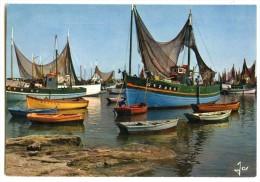 Bateaux De Pêche Dans Le Port De LESCONIL - écrite Non Timbrée 2 Scans - Lesconil
