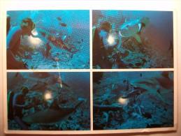 Carte Postale Maldives Male Atoll (voir Timbre) - Maldives