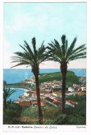 RB 1069 -  Early Postcard - Camara De Lobos - Madeira Portugal - Madeira