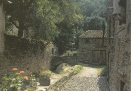 BLESLE  (43)  Quartier De La Halle Au Blé Et De La Tour De Mercoeur. Le Pont Sur Le Bellan - Blesle